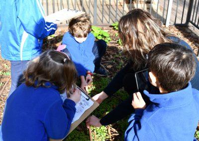 East-Adelaide-School-Gallery-11