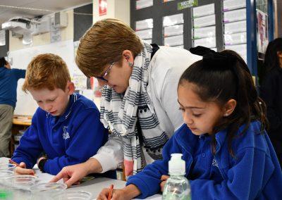 East-Adelaide-School-Gallery-7